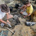 arqueologos_